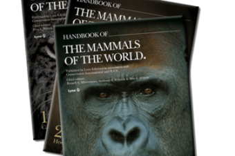 """""""Handbook of the Mammals of the World: Primates""""- New Hardcover to be Released"""