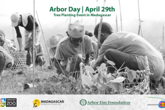 Arbor Day Celebration in Madagascar 2016