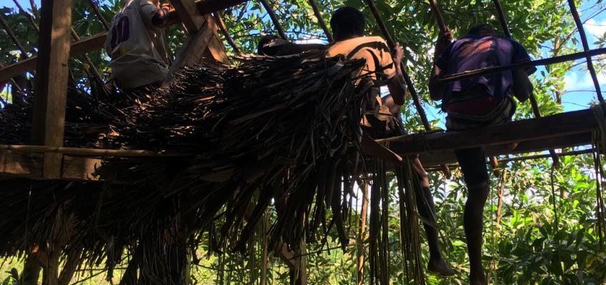 Conservation, Efficiency, and Ten Barefoot Men
