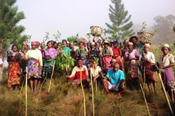 Reforestation Revives Abandoned Village